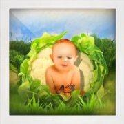 Baby Chou Fleur