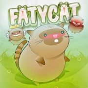 Fatycat Collection