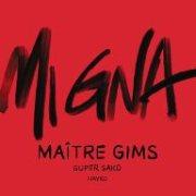 Mi Gna / Maître Gims Remix
